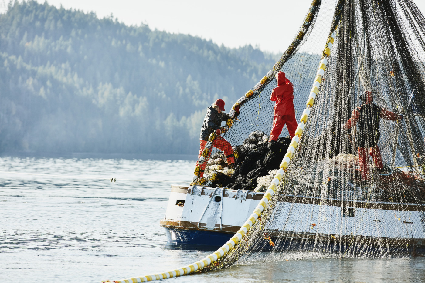 Sustainable Salmon Fishing